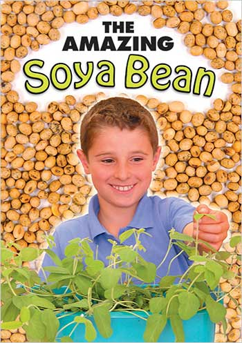 The Amazing Soya Bean