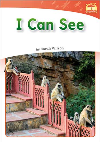 I Can See>