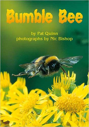 Bumble Bee>
