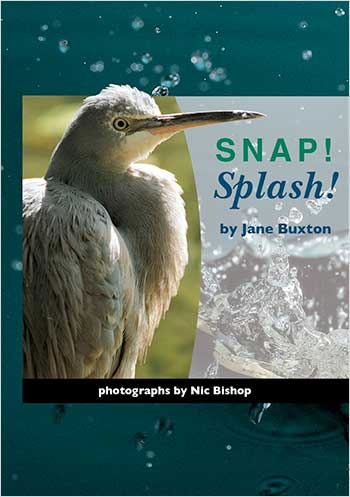 Snap! Splash!