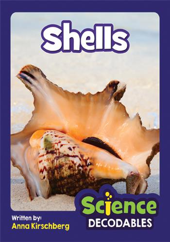 Shells>
