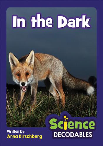 In the Dark>